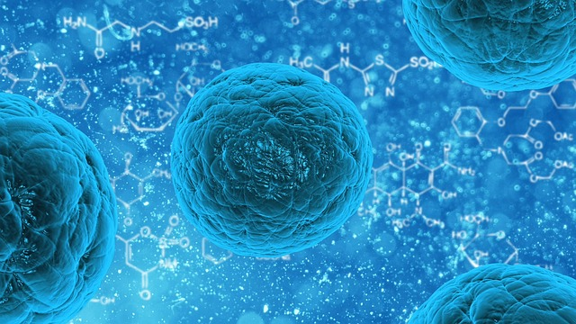 cellule souche - Are stem-cell therapies for parkinson's disease ready for clinical trials?